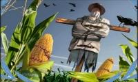 Το τέλος της Ελληνικής ποικιλίας σπόρων και το κλείσιμο της Τράπεζας Διατήρησης Γενετικού Υλικού